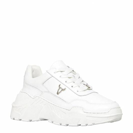 Windsor Smith - Carte Le Sneakers White -